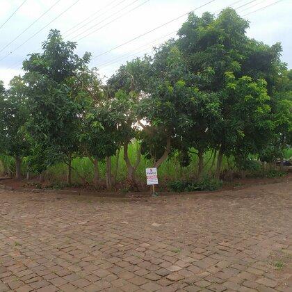 Vende-se Lindo terreno de esquina em Marau
