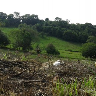 Vende-se lotes de terra para sítios próximo da cidade de Marau.